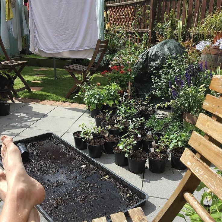 Running out of space on the patio - need to expand the garden (and stop the rain drowning my poor freshly potted stuff)      #t #uk #gardening #horticulture #garden #washing