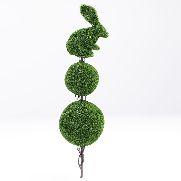 47 best Topiary frames images on Pinterest