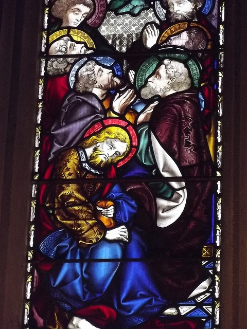 Stained glass window, Ripon Cathedral, England ~ by Yorkshire Days via flickr
