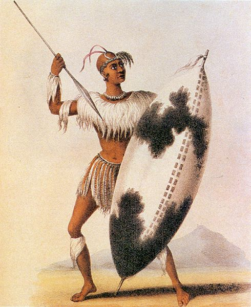 46 Best Nguni Warriors Images On Pinterest