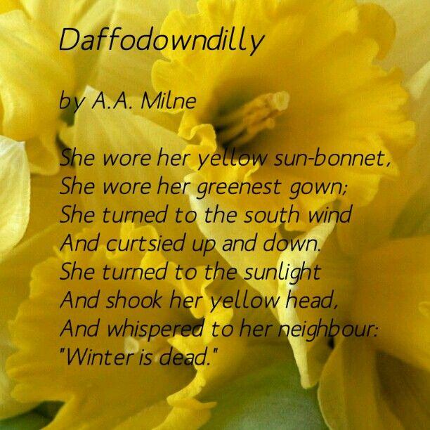 Daffodil Spring Poem Daffodowndilly By A.A.Milne