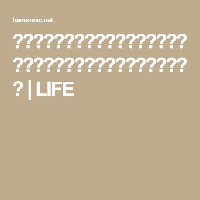 得する人損する人のハンバーグレシピ!サイゲン大介のミート矢澤再現レシピ | LIFE
