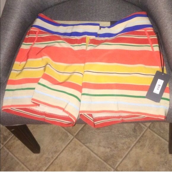 BRAND NEW striped silk shorts! Super cute and light silk shorts. Perfect summer colors. The Limited Shorts