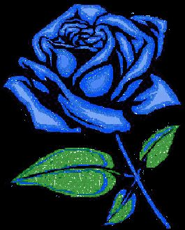 animated blue roses | Animated Blue Rose