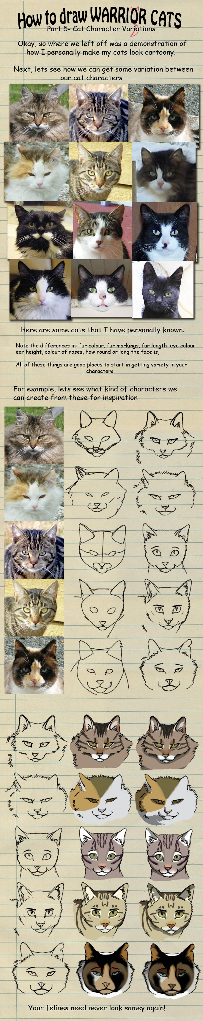 Best 25+ Cat Drawing Tutorial Ideas On Pinterest  How To Draw Cats, Cat  Anatomy And Learn Drawing