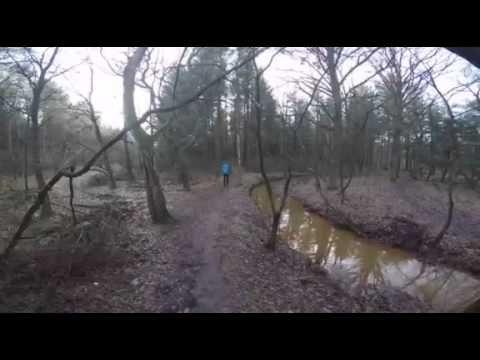 wandelen op de Grotelsche Heide