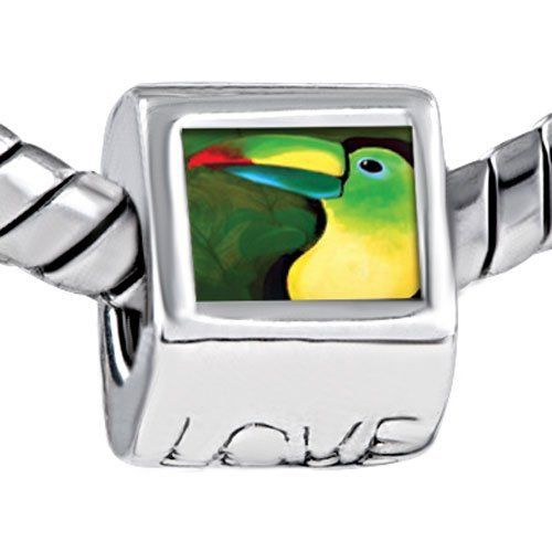 Pugster Colored Parrot Photo Engraved Love European Beads Fits Pandora Charm Bracelet Pugster. $12.49. Size (mm): 7.60*9.10*10.10. Weight (gram): 4.20. Metal: Metal. Color: Red, yellow, green