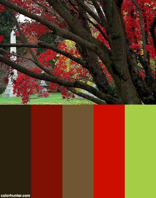 Cincinnati Spring Grove Cemetery Arboretum Autumn