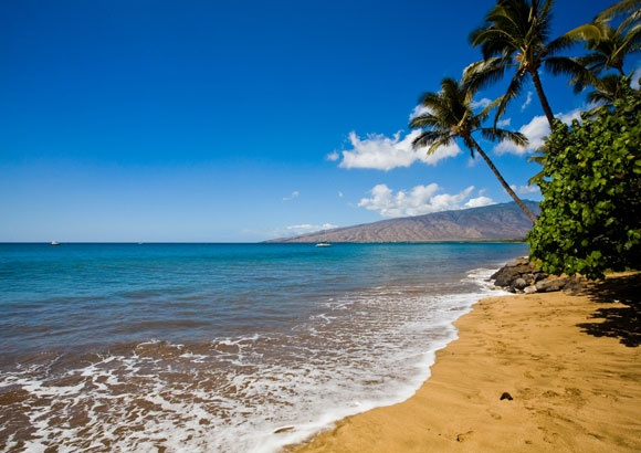 A photo of a beach in Hawaii