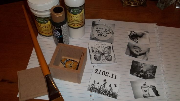 Making my butterfly box