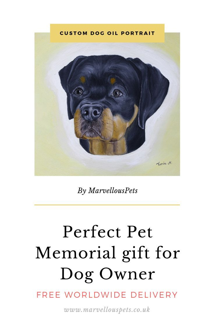 Rottweiler Painting Custom Pet Portrait Art Dog Amazing Gift Gifts For Christmas Ideas If You Would Li Pet Portraits Custom Dog Portraits Custom Pet Portraits