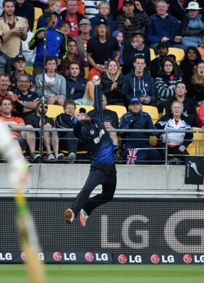 AIR VETTORI: Black Caps veteran Daniel Vettori makes a spectacular one-handed catch to dismiss West Indies batsman Marlon Samuels in the Cricket World Cup semifinal at Wellington Regional Stadium.