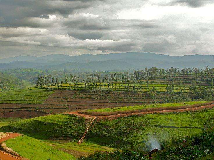 burundi terraces. 99년에 갔던 곳