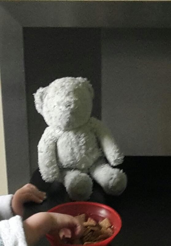 Lost on 07 Aug. 2016 @ Brighouse . My little boy has lost his best friend... His Bill Bear. Bill bear is an all white ( a little greyed now tbh) bear X you can no longer see his grey stitched eyes as he is loved soooo much n is miss... Visit: https://whiteboomerang.com/lostteddy/msg/ilhuka (Posted by Sarah on 08 Aug. 2016)