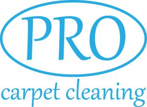 19 best carpet cleaning logos images on Pinterest