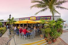 Conch Republic Seafood Company - Seafood Restaurant, Bar, Live Entertainment and Conch Farm Research Center in Key West, Florida.