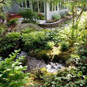 1000 images about pond and garden landscaping on for Plants around ponds