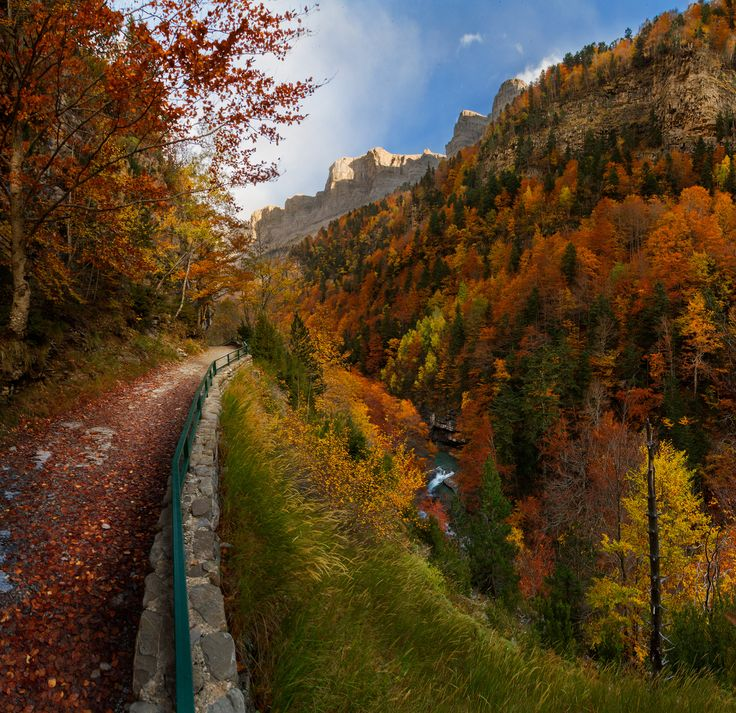Autumn in Ordesa National Park, Pyrenees, Huesca (Spain) by Ivan Macia