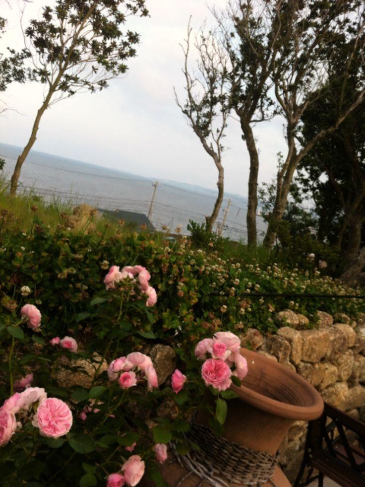 oceanview 海の見えるカフェ 愛知県美浜町