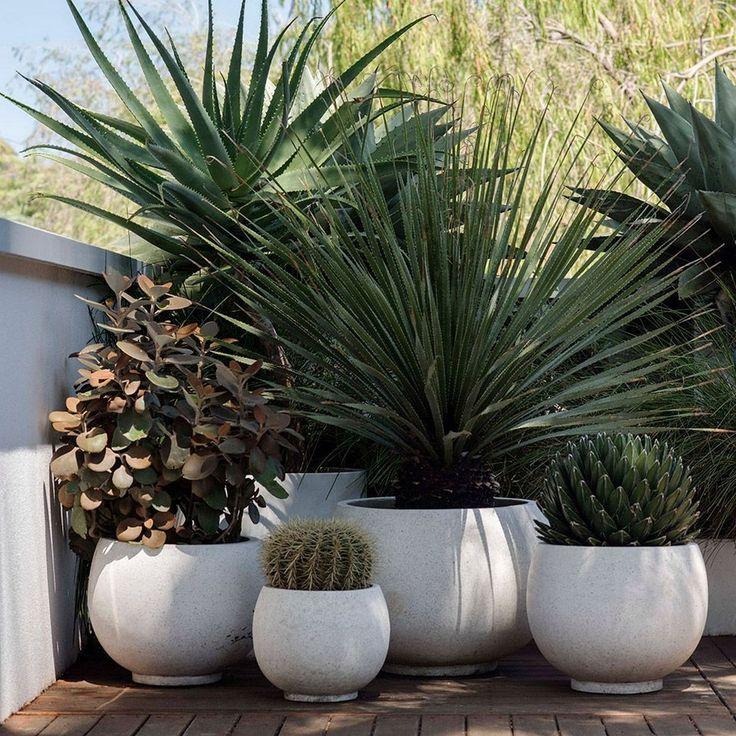55 Modern Garden Design Ideas to Try