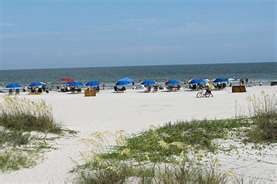 Hilton Head Beach - We go here a lot! Looks just like this! We bike it. awesome! I'ts making me want to go there right now! :)