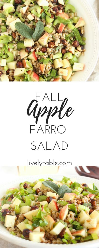 This Apple Farro Salad is a nutritious fall side dish made with apples, hazelnuts, sage, and farro. It's the perfect combination of delicious cool weather flavors! (vegetarian) | via livelytable.com