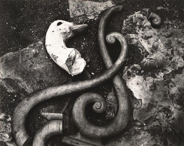 Rubbish - Edward Henry Weston, 1939