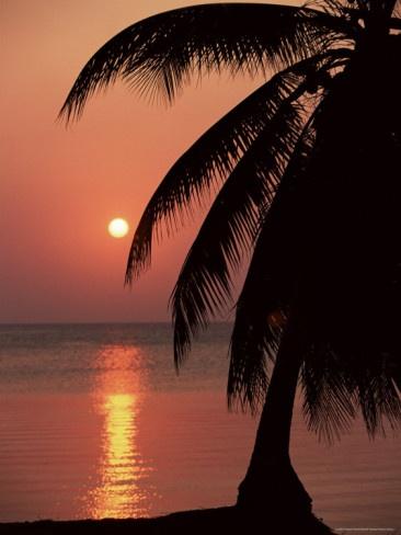 Sunset Roatan Island Honduras