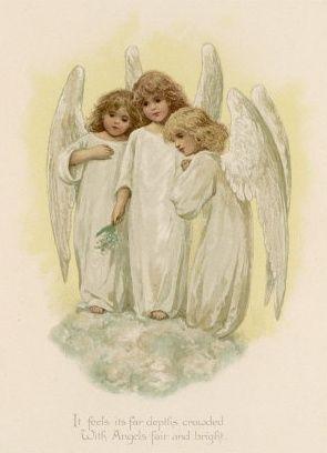 white angels