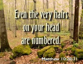 Matthew 10:29-31 | ... very hairs on your head are numbered.Matthew 10:29-31 | DIVINE SPIRIT