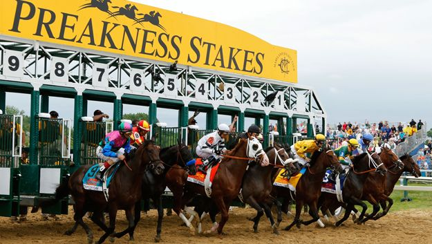 2017 Preakness Field: Pro's and Cons, by Amy Nesse  For the best workout reports and analysis go to Brunowiththeworks.com  Don't guess about first time starters, or