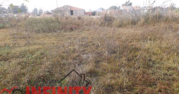 Infinity Negócios Imobiliários - Terrenos para Venda/Aluguel em Marisul