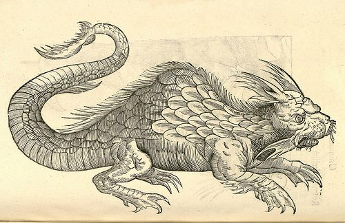 "Orobonis Piscis effigies ""Ulissi Aldrovandi (Aldrovandus) (1522-1605)   Woodcut illustrations from Aldrovandi's 'History of Monsters'"