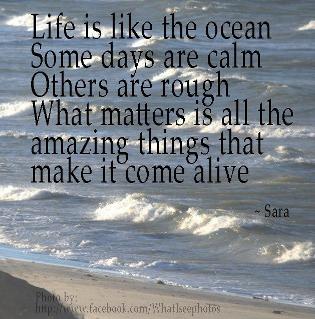 Life Is Like The Ocean Quotes: 233 Best Surf Quotes Images On Pinterest