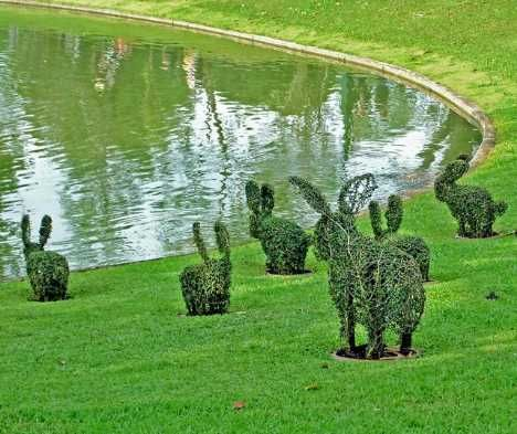 Leaf Beyond Belief: 11 Tree-mendous Examples Of Topiary Art | WebEcoist
