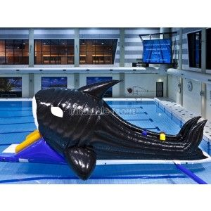 Special today black shark water slide for pools,inflatable water slide for kids