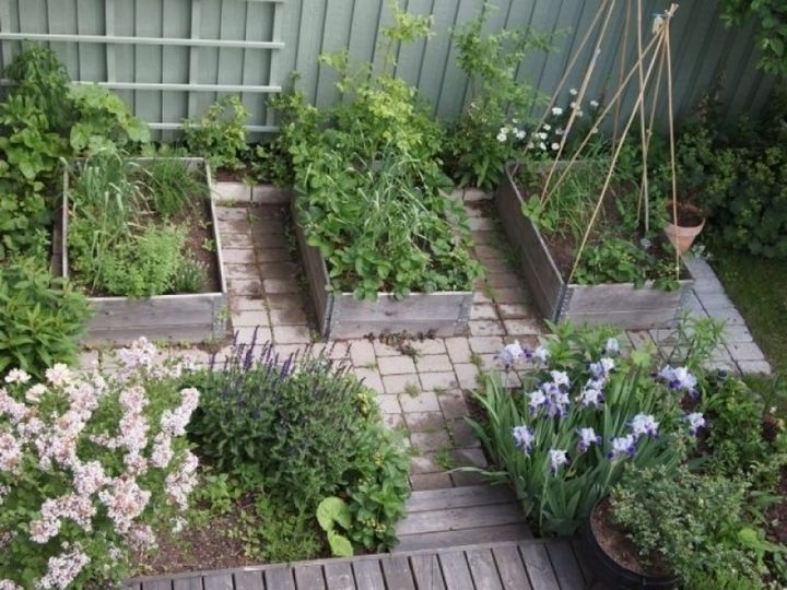1014 best garten images on Pinterest Garden ideas, Gardens and