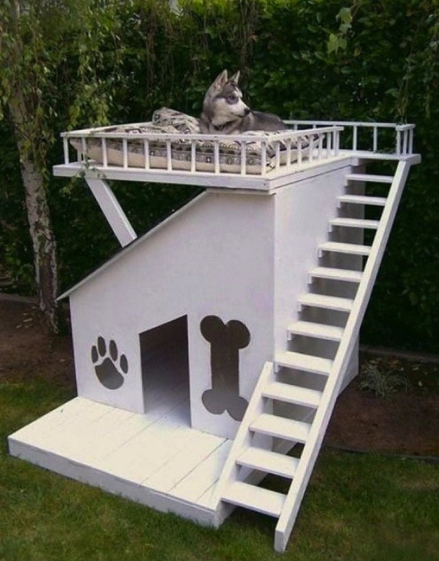 Cool Doghouse ;) Use My Old Outdoor Patio Furniture Cushions?