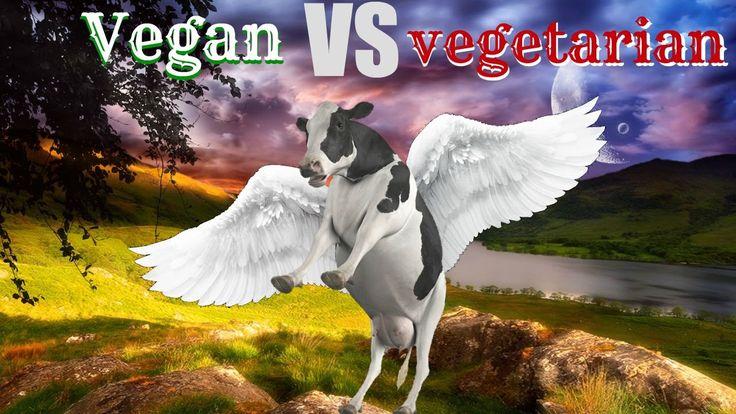 Vegan VS vegetarian/Are Vegans Privileged? + Vegan Body Builders