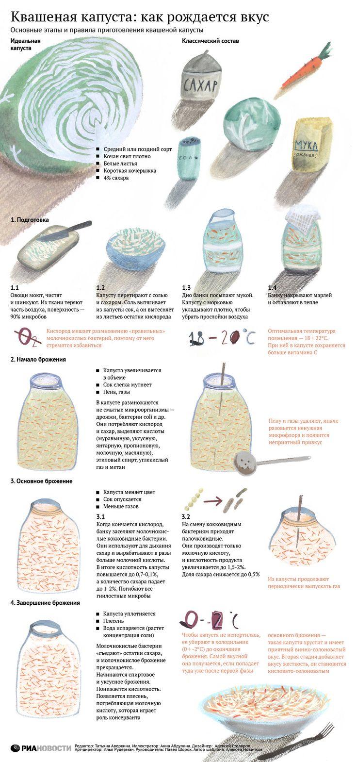 Квашеная капуста: как рождается вкус | РИА Новости