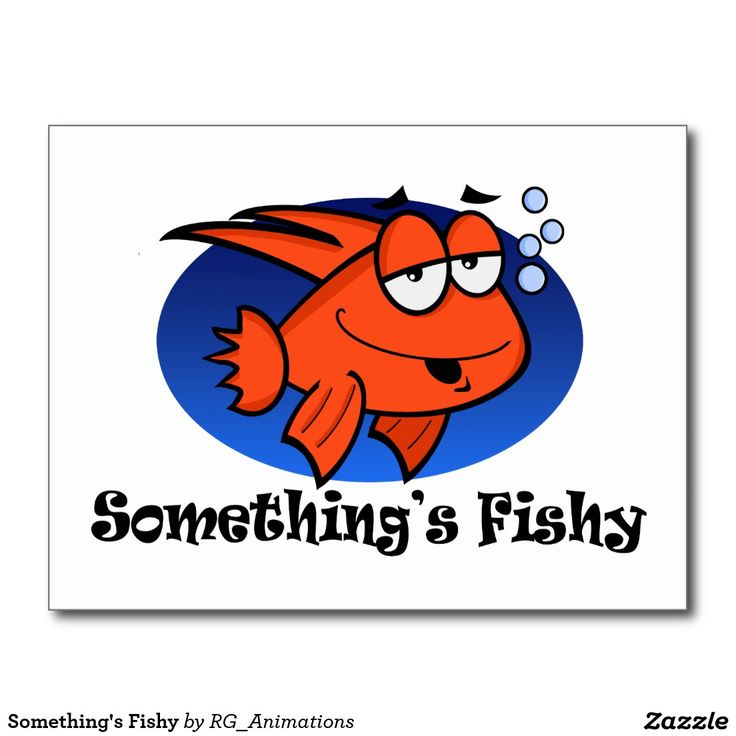 Something's Fishy Postcard