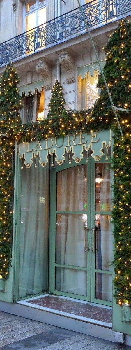 723 best images about storefront flowers gardens on for Laduree christmas