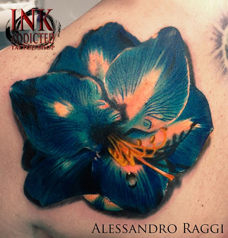 Flower, color, realistic, 3D by Alessandro Raggi