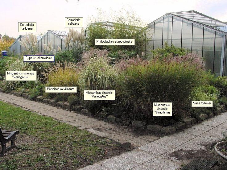 Les 86 meilleures images du tableau jardin gramin es sur for Entretien jardin rueil malmaison
