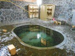 岩手県花巻市にある鉛温泉 藤三旅館  豊沢川畔に新日本百名湯に選ばれた一軒宿藤三旅館  6種の浴槽すべて源泉かけ流しで中でも白猿の湯が自慢 天然の岩をくりぬいて作ったお風呂の底からは源泉100のお湯がこんこんと湧き出しています 深さが約1.25mあり立って入る珍しいお風呂です  日帰り入浴できるのは白猿の湯桂の湯白糸の湯銀の湯の4種 大沢温泉とセットの日帰り入浴券もありますよ  tags[岩手県]