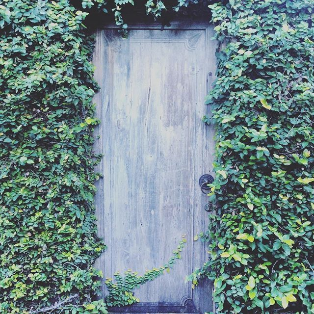 While on my daily wanderings through the many alleyways of Bali, one can never underestimate the intrigue of a secret door... ➰ #adventure #bali #baliexpat #exploring #hiddendoor #indonesia #secretdoor #travel #traveltuesday #whatsbehindthedoor