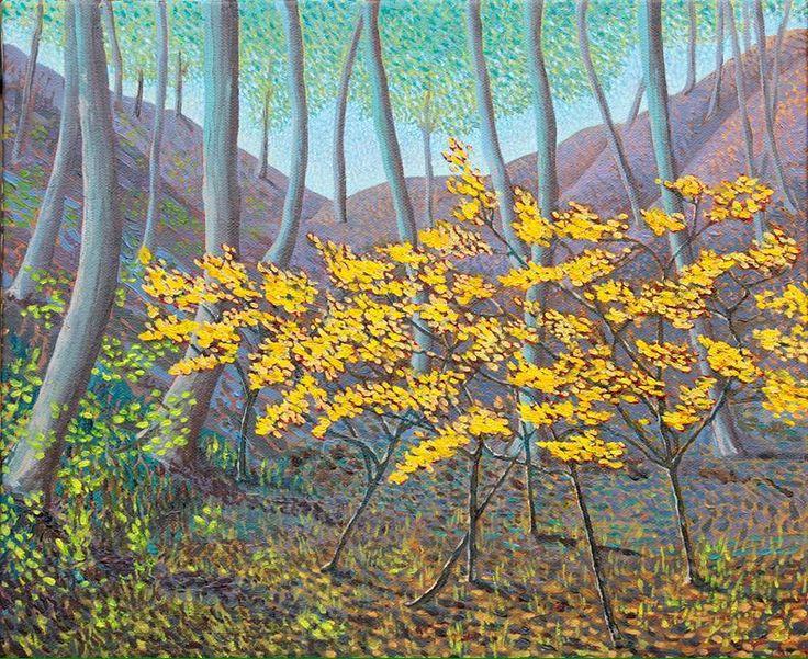 Saplings in Sunlight 2014 12x14 in @cottagelife @HarriSonic @globalartleague @Mark_Sanche @AllArtNow #art #FineArt