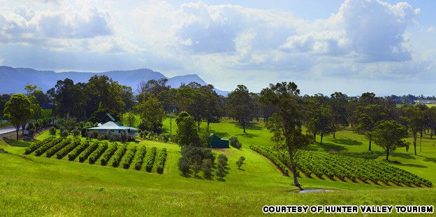 7 Best Hunter Valley Wineries, NSW, Australia
