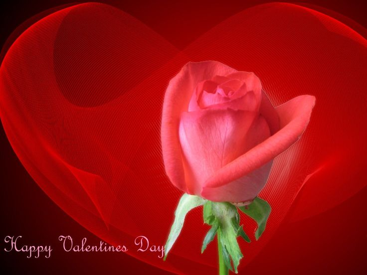 e7756bda36cf85eb298494884eceb3ee ideas for valentines day valentine day cards - valentine | The Romance Dish: Happy Valentines Day