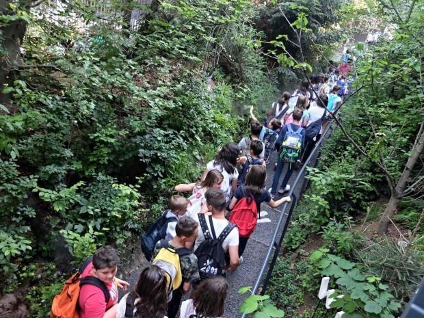 La sensazione è davvero quella di essere più che a Rho-Pero in una foresta. Il percorso esterno del padiglione dell'Austria con i suoi sessanta alberi e le 12mila piante boschive è in grado di produrre l'ossigeno necessario per 1800 persone all'ora. Muschi, cespugli e albe